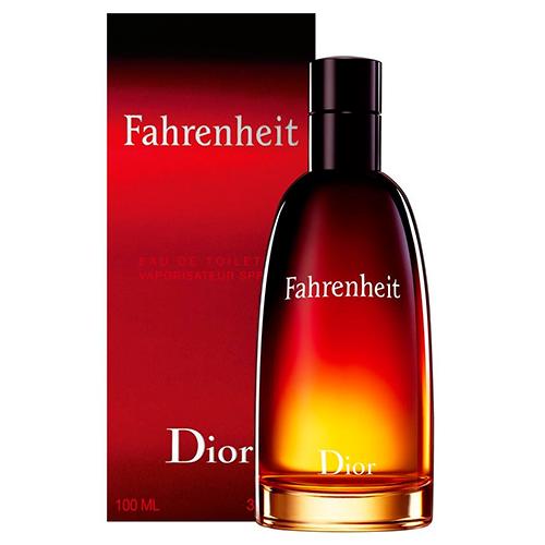 Fahrenheit Masculino Eau de Toilette - Christian Dior